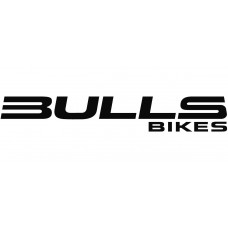 Bulls E-Stream EVA TR2 (model 2019)